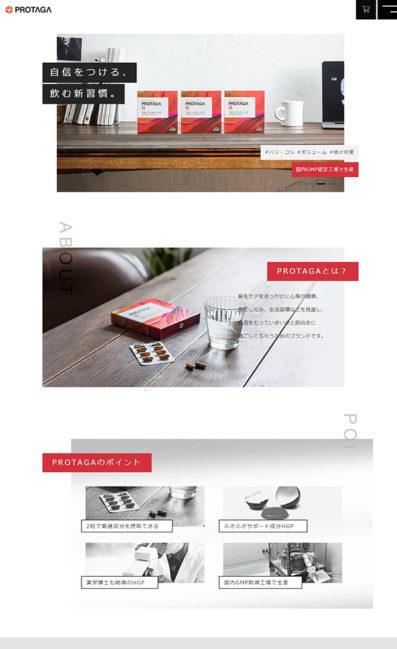 PROTAGAのLPデザイン