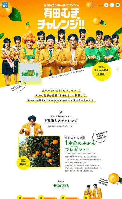 有田むきチャレンジ!!のLPデザイン